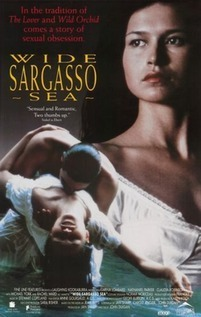 Subtitrare Wide Sargasso Sea (1993)