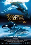 Subtitrare Dolphins and Whales 3D: Tribes of the Ocean (2008)