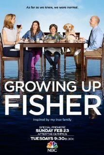 Subtitrare Growing Up Fisher - Sezonul 1 (2014)