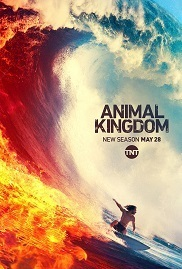Subtitrare Animal Kingdom - Sezonul 4 (2016)